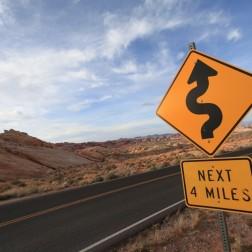 Curvy in Nevada