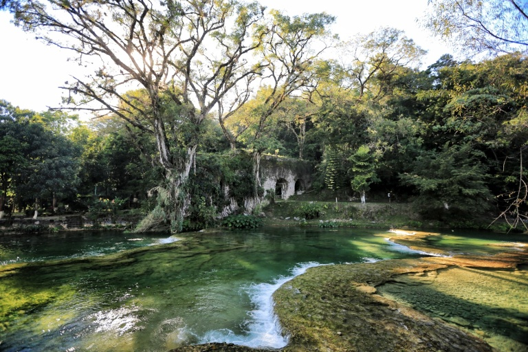 This is a structure that is overgrown with trees at the Cascadas De Tamasopo