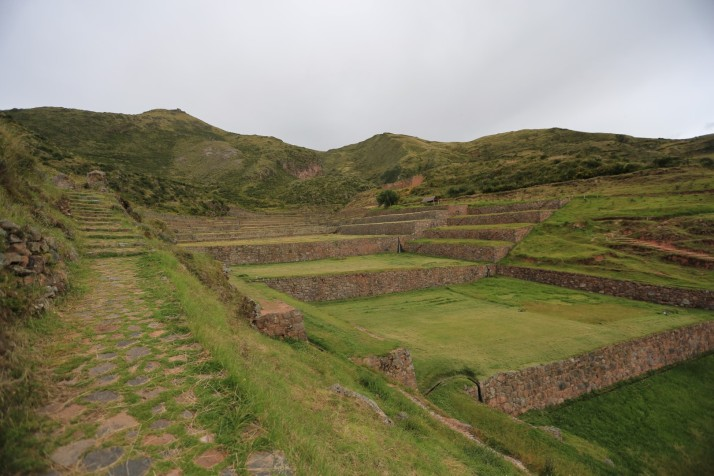 Brilliant Incas figured out how to perfectly grow crops ... but they wrote nothing down!