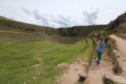 The Incas experimented with micro climate agriculture here. Each level created a temperature difference of 1 degree.