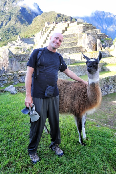 Yes - they have Llama at Machu Picchu! And they do pose for photos!