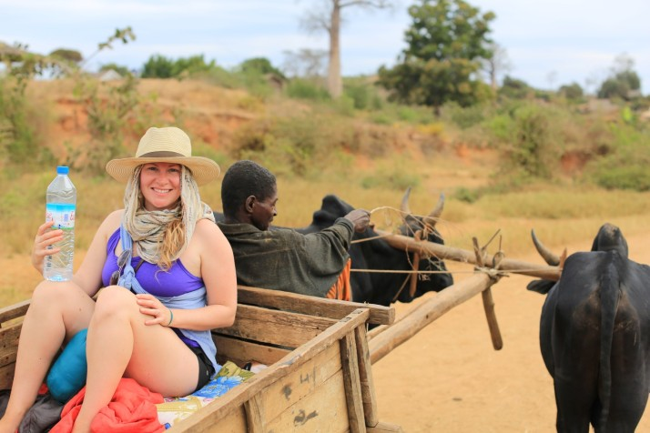Katie in the zebu cart ... not exactly comfortable - but very interesting